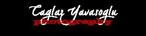 Caglar YAVASOGLU Logo